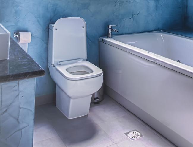 fuite wc sol autres vues dscjpg kb x ruban de rparation. Black Bedroom Furniture Sets. Home Design Ideas