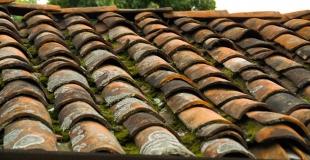 Nettoyage de toiture : pourquoi faut-il démousser régulièrement sa toiture ?