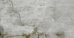 Traitement de façade contre la mousse, champignons ou pollution : conseils et tarifs